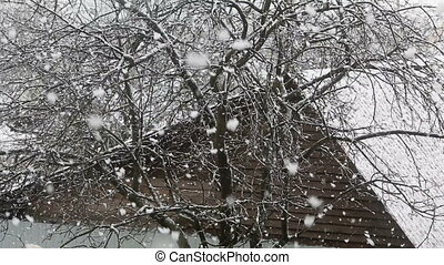 Large snow flakes are falling from the sky against the...