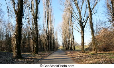 Bike lane in Parco Nord in the north of Milan - Bike lane in...