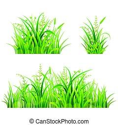 Set of green grass on white, vector illustration