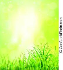 Green grass background - Spring or summer green grass...