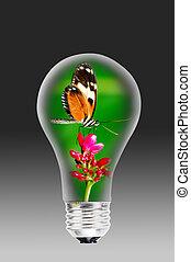 luz, bombilla, mariposa