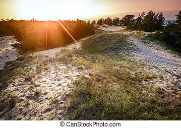 Whitefish Point, Michigan - Sand dunes by the beach on Lake...