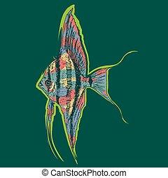 Graphic Aquarium Scalar Or Angelfish Concept - Graphic...
