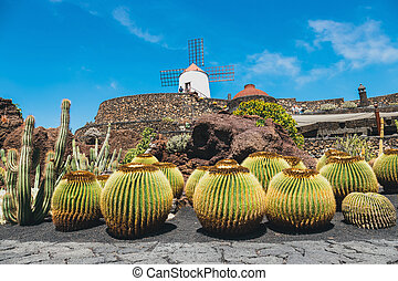View of cactus garden, jardin de cactus in Guatiza, popular...