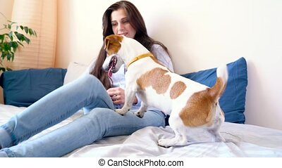 Girl lies and plays on bed together with dog - Woman lies...