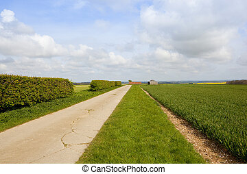 bridleway hedgerow and wheat field - a section of concrete...
