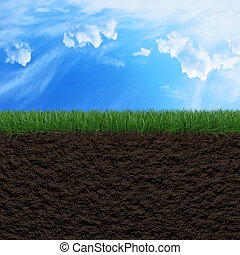 Grass, soil and sky background - Fresh green grass, soil and...