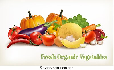 Big set of colorful vector vegetables. Vector illustration.