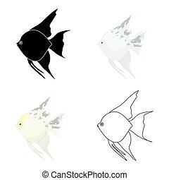 Angelfish common fish icon cartoon. Singe aquarium fish icon...