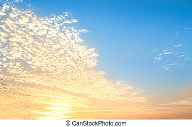 Sunrise - Cloudy sky abstract background. Smooth gradient background light blue color