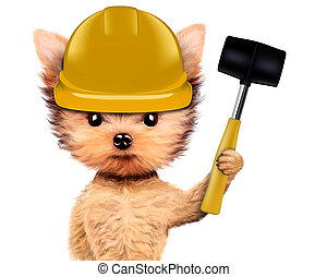 Funny dog with hammer Isolated on white