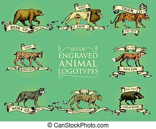 big set of vintage emblems, logos or badges with wild...