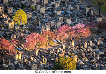 Aerial view of Montparnasse spring Cemetery in Paris, France