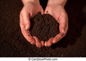 Quality soil in female gardener hands, cultivated dirt...