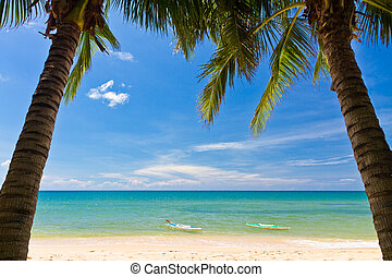Sand beach with pams and canoes in Phu Quoc close to Duong...