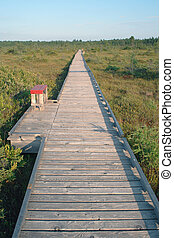 Endless boardwalk over peat bog