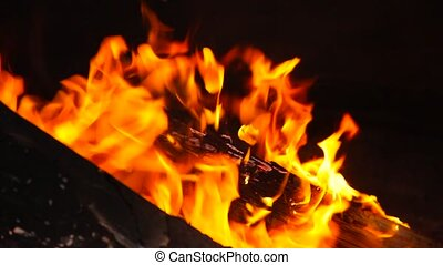 Beautiful fire flames close up