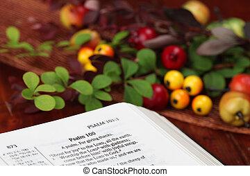 Thanksgiving Bible