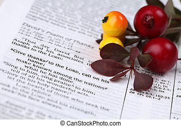 Thanksgiving Bible - Thanksgiving arrangement with the Bible...