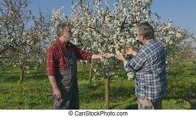 Handshake of agronomist and farmer