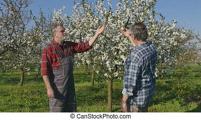 Handshake of agronomist and farmer - Handshake, agronomist...