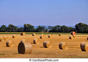 straw bales in fall