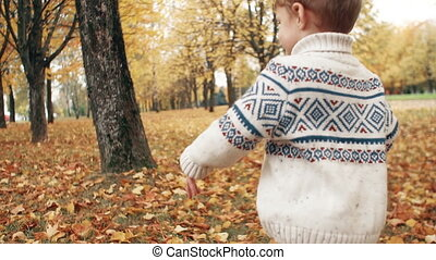 happy funny cute little boy running over fallen leaves through the amazing autumn alley in the park slow motion