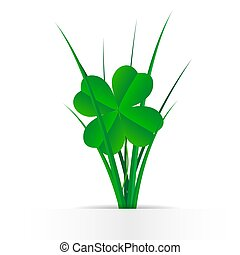 Clover leaves in the grass