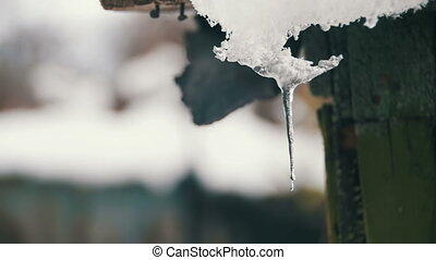 Snow Melts from the Roofs and Drips Down in the Spring. Slow...