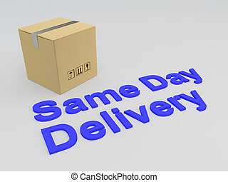 Same Day Delivery concept