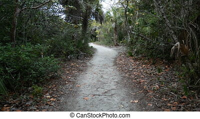 Walking trail at the Barefoot Beach State Preserve in...
