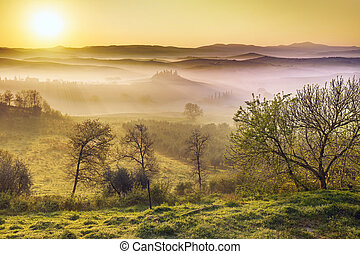 sunlight at dawn of a misty morning in Tuscany - dawn of a...