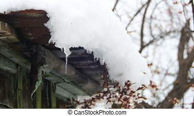 Snow Melts from the Roofs and Drips Down in the Spring....