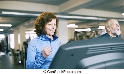 Fit senior couple in gym on treadmills doing cardio work out.