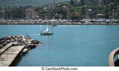 Sailing boat returning to the port of Rapallo, with view of...