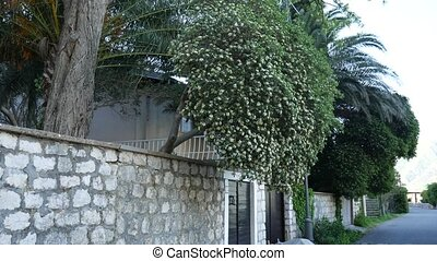 Stone fence in Montenegro. Villa near the sea. - Stone fence...