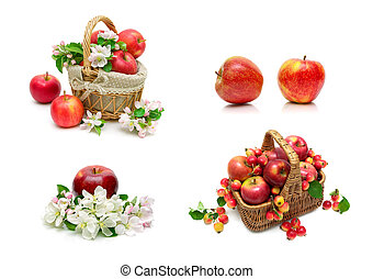 Ripe red apples on a white background.