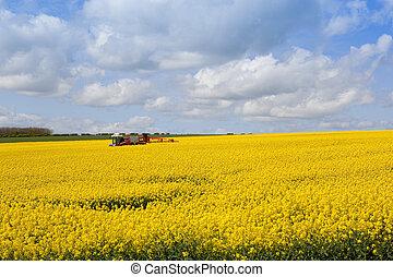 crop sprayer and oilseed rape