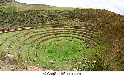 Inca ancient terraces