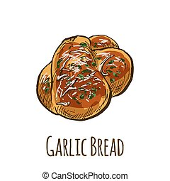 Garlic bread, full color hand drawn vector illustration