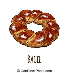 Bagel, full color hand drawn vector illustration