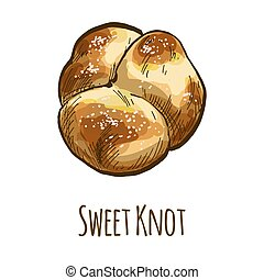 Sweet knot bun, full color hand drawn vector illustration
