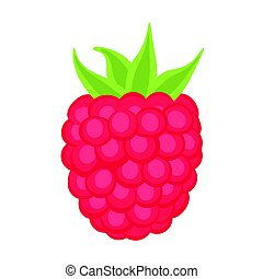 raspberry on the white background