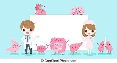 cartoon doctors with organ