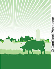 cow on a townscape background