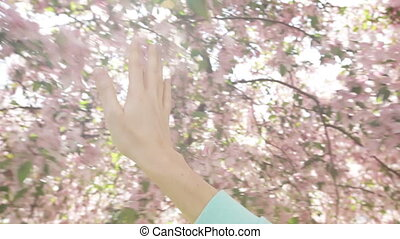 Woman holds her hand through a flowering spring tree in the garden