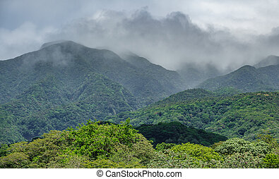Rincon de la vieja vulcano and misty clouds - Closeup view...
