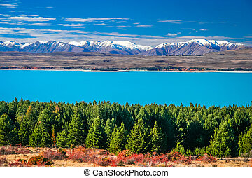 Color of autumn on the New Zealand south island