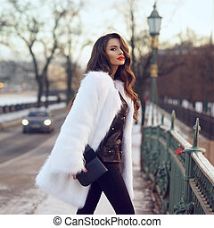 Lady in fur coat outdoors - Young beautiful stylish woman...