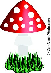 Toadstool isolated on white background